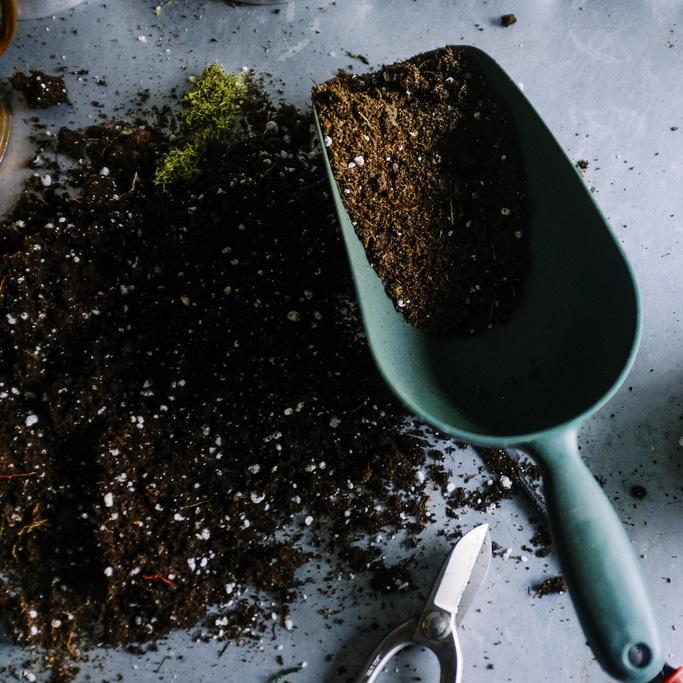 trowel-soil-no-dig-compost